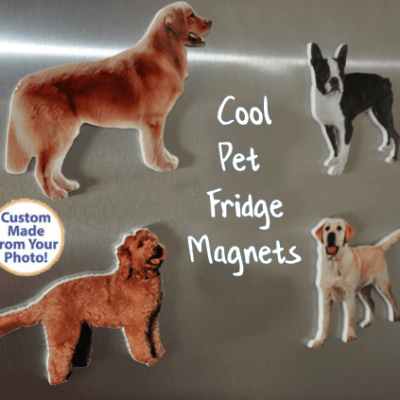 Pet Fridge Magnets Photo Gifts