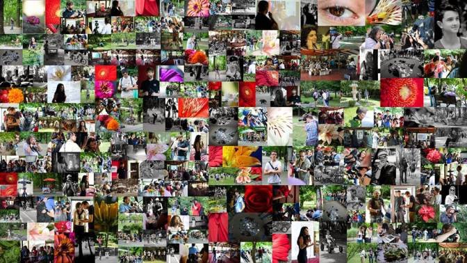 Colaj fotografii participanti