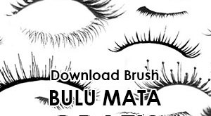 Download Brush Bulu Mata