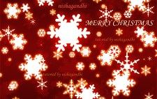 Create A Beautiful Christmas Background Using Photoshop