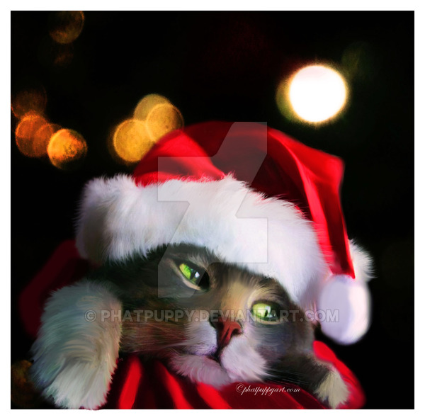 a_purrfect_christmas_by_phatpuppy
