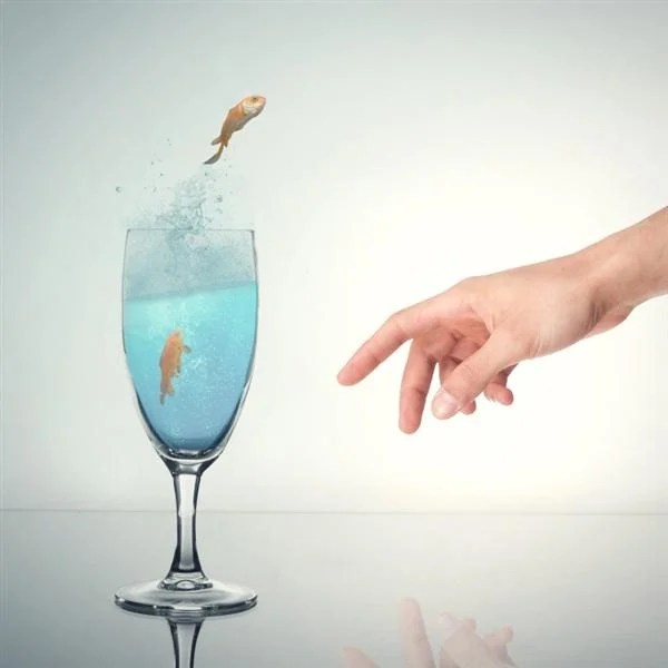 How to Make a Fish Jump Out of Water Photo-manipulation using Photoshop (Custom)