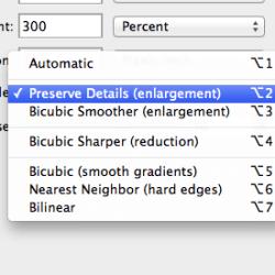 Image Size Preserve Details