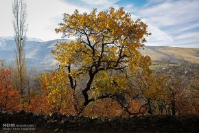 Hamedan, Iran - Autumn in Hamedan 12