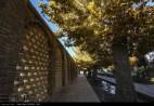 Kerman, Iran - Kerman County, Mahan - Bagh-e Shazdeh (Shazdeh Garden) 06
