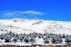 Zanjan, Iran - Zanjan's Autumn Snowfall 02