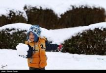 Snow Kerman Iran Snowballs 03