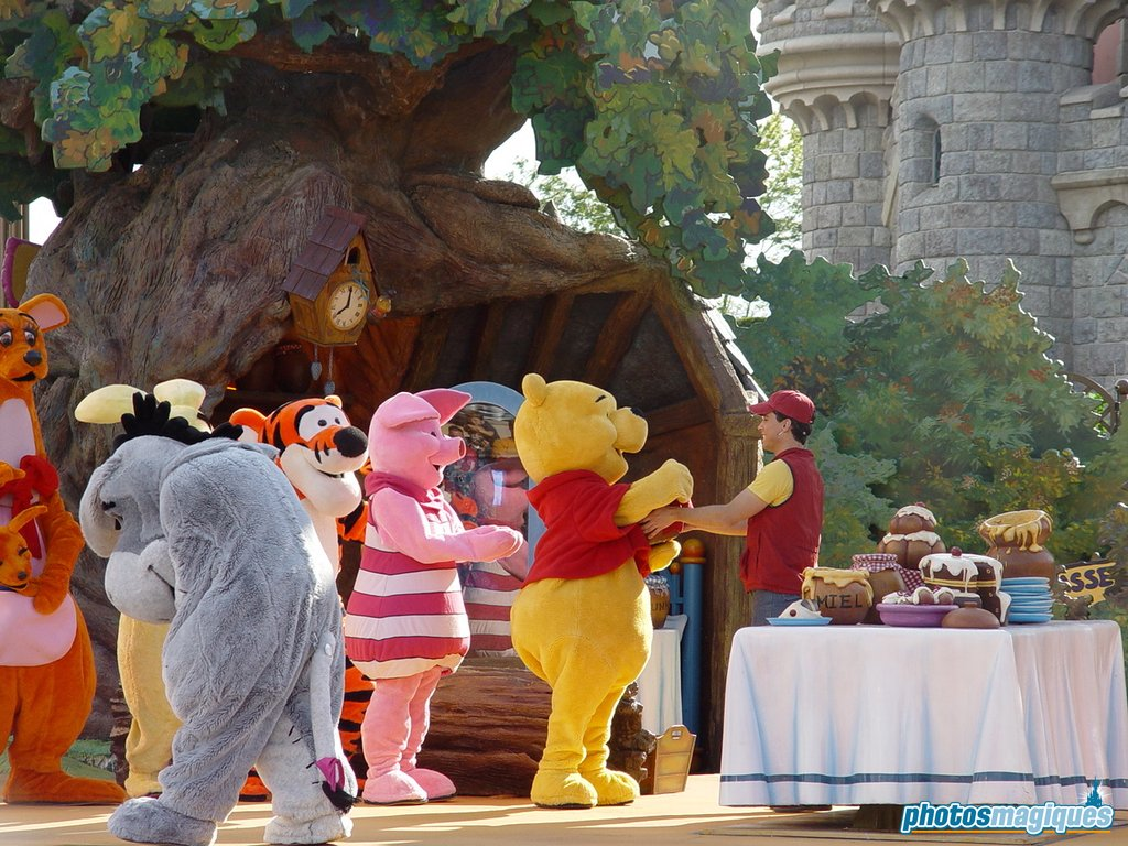 Winnie The Pooh And Friends Too Royal Castle Stage Photos Magiques