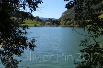 PIN_6411 web1600