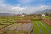 Paysage de risières du Yunnan - Chine