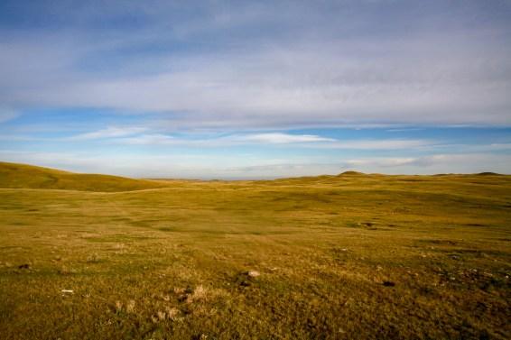 Endlos erscheinender Trans Canda Highway one führt durch Saskatchewan durch eine Steppe in Kanada. Oktober 2015 // Endless appearing Trans Canada Highway one leads through the steppes of Saskatchewan. Canada. October 2015