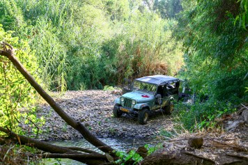 Land Rover Defender Geländefahrzeug im Wald vor dem Jordan Fluss in Israel, Juli 2017 // Land Rover Defender ATV driving in the forest on the way crossing the Jordan River in Israel, July 2017