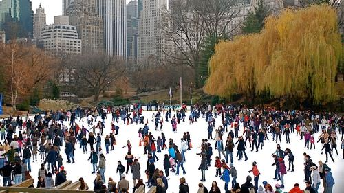 5 Things You Have to Do in New York in November