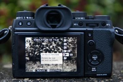 Simulation de film Monochrome