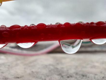 Macro Water
