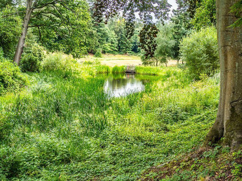Photo Walk, Cliveden - Buckinghamshire 1