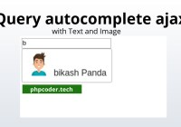 jQuery autocomplete using ajax and jQuery