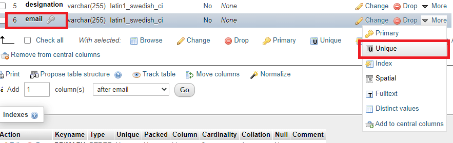 Set Email Column as UNIQUE on the Database