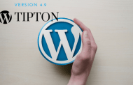 WordPress New Release 4.9