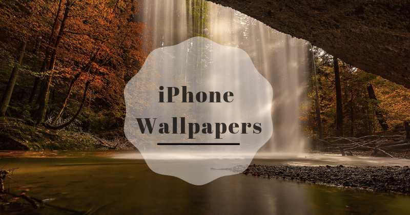 Download iPhone wallpapers