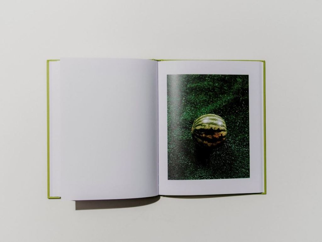 PHROOM magazine // international research platform and online exhibition space dedicated to contemporary fine art photography and video art // book review