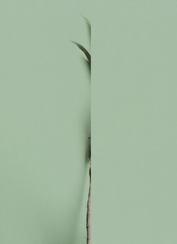 PHROOM magazine international research platform for contemporary photography and video art // Enrico Smerilli