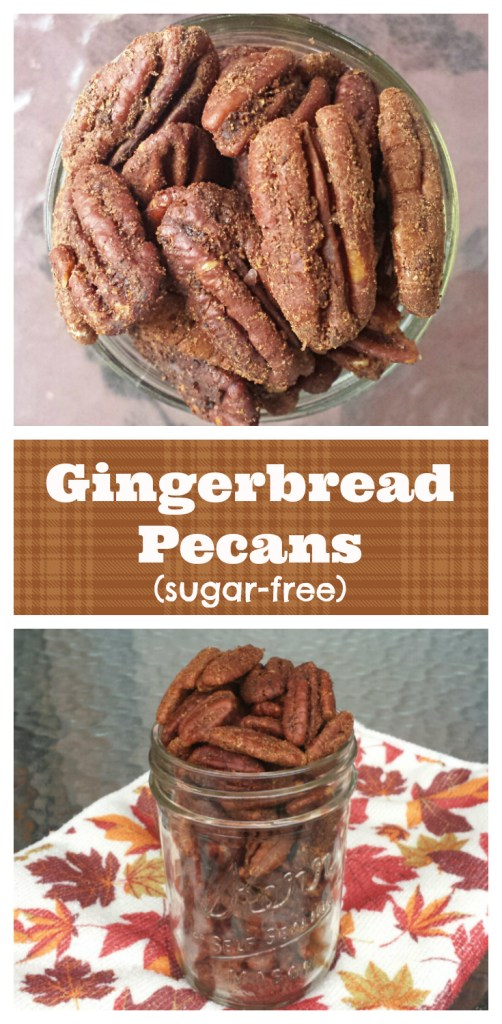 Gingerbread Candied Pecans (sugar-free)