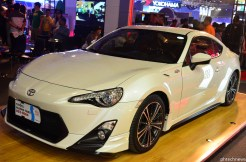 MIAS2013_Cars (30)