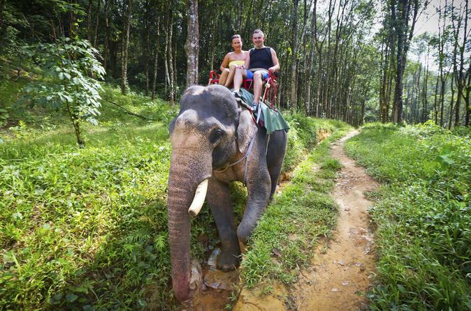 Resultado de imagen de conduciendo elefantes