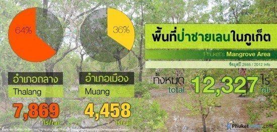 Phuket's Mangrove Area