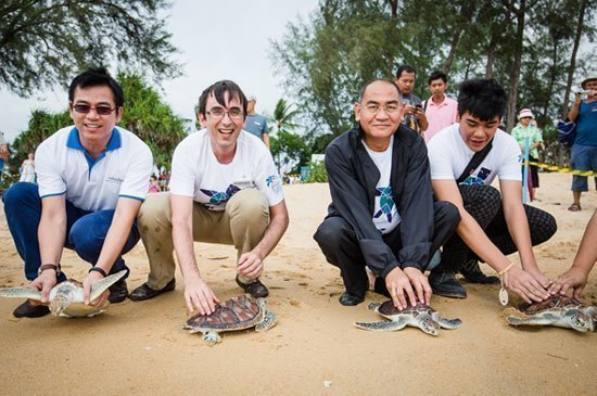 Turtle Release Event