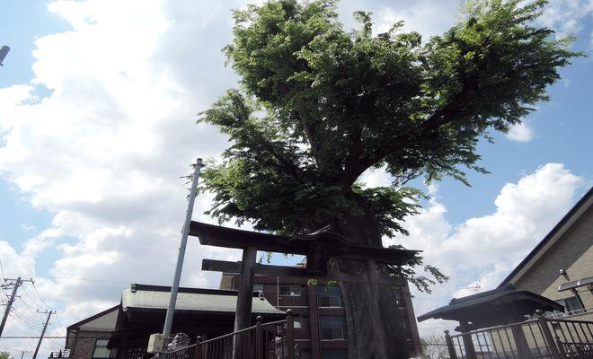 越ヶ谷浅間神社