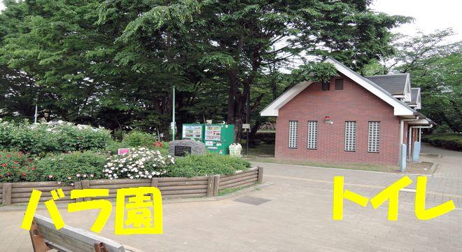 与野公園のトイレ