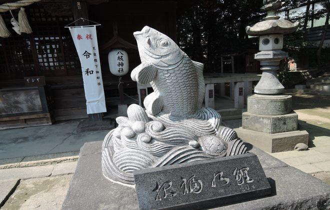 狛鯉(阿形)