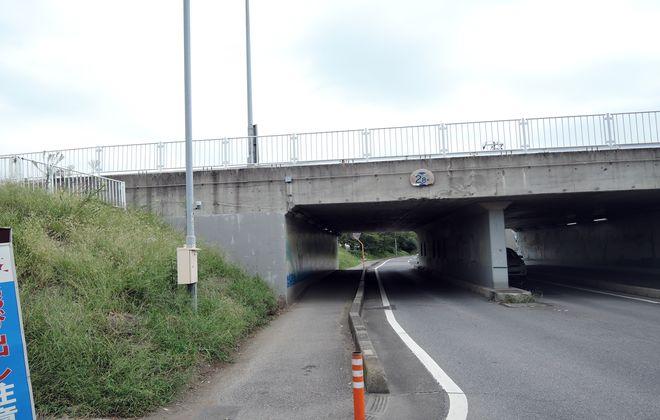 綾瀬川橋下