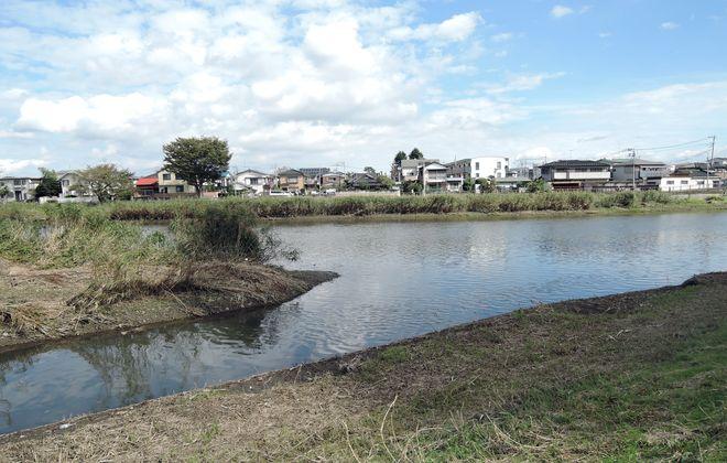 古隅田川と古利根川の合流地点
