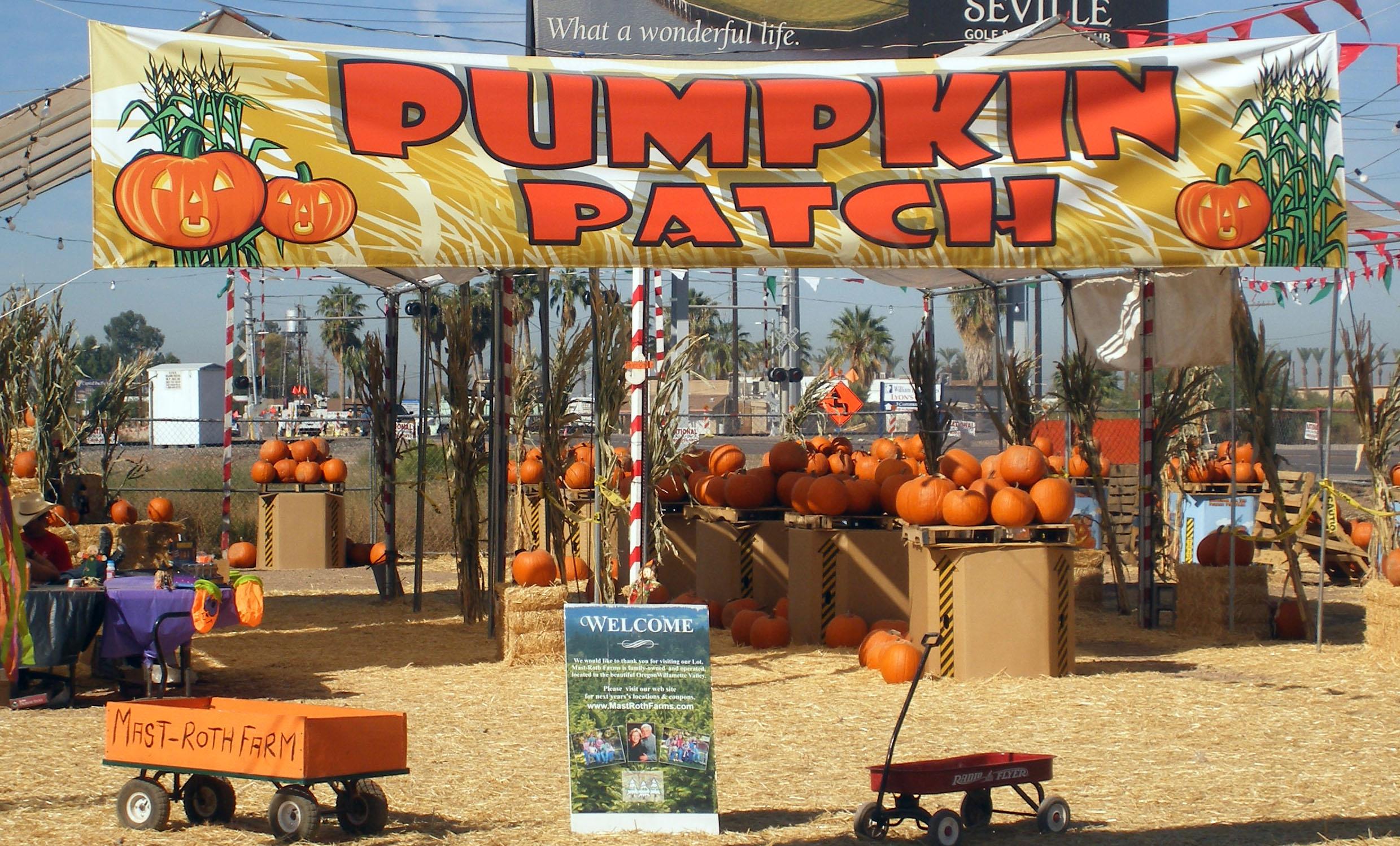 Pumpkin Patch in Higley