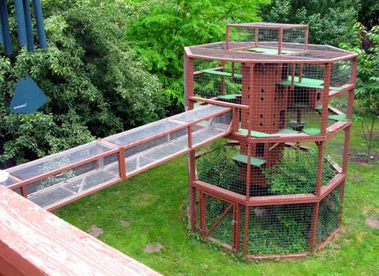 beautiful cat house plans images - 3d house designs - veerle