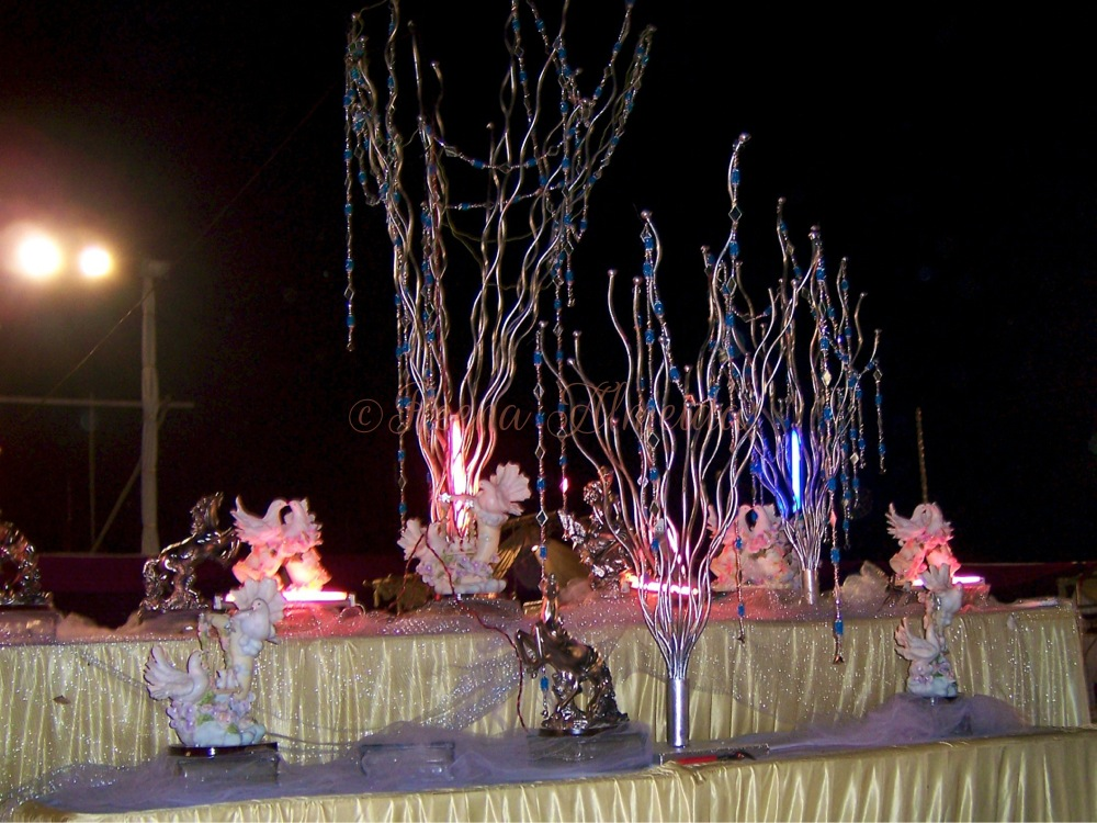 Big Fat East Indian Weddings Amp How I Planned Mine Plan M