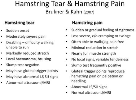 Hamstring Tear & Hamstring Pain - Figure 3