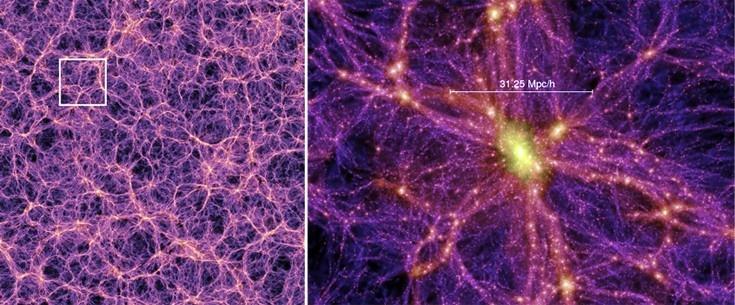 cosmicweb