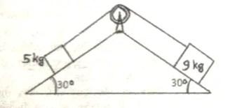 physics sample paper class 11