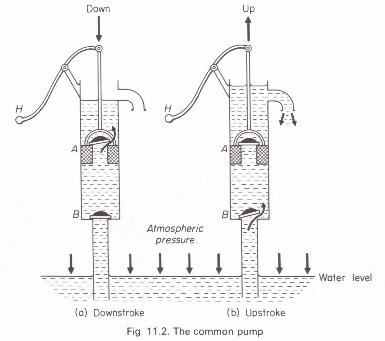 The Common Pump Lift Pump Physics Homework Help Physics Assignments And Projects Help