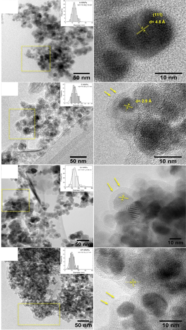 Transmission electron microscopy images