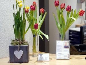 Blumendekoration bei Physiowell Bielefeld
