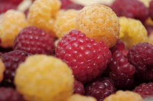 raspberries-796484_640