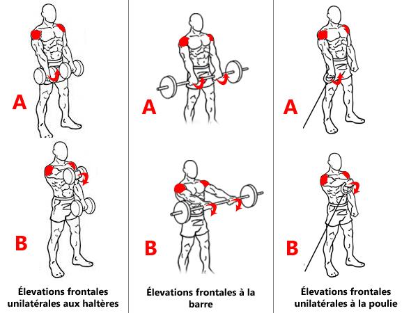 Exercices pour le faisceau antérieur des épaules
