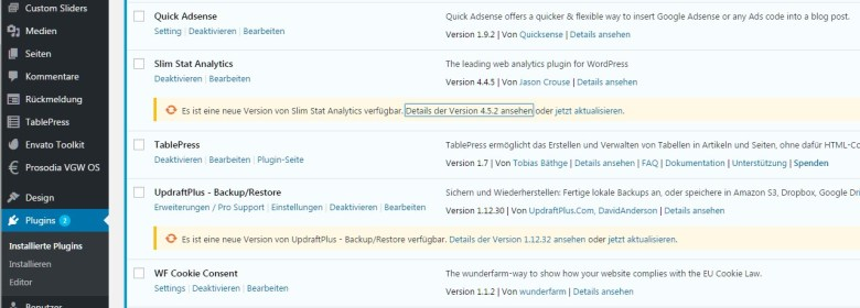 Plugin-Updates in WordPress manuell ausführen
