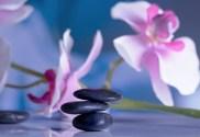 quelles sont solutions naturelles contre les boutons d'acné peau grasse tous les produits naturels pour en finir