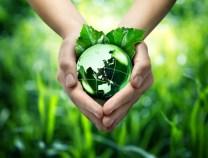 Heilpflanzen anbauen schont die Umwelt
